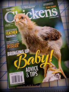 ChickensMagazine March April