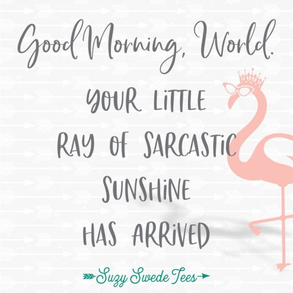 Good Morning World, you little ray of sarcastic sunshine has arrived.
